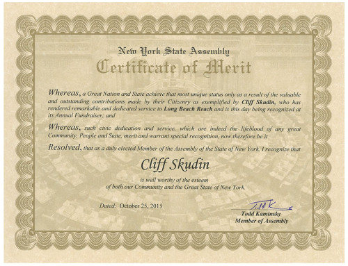 New York State Teaching Certification - Skudin Surf