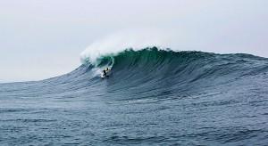 will_surfline